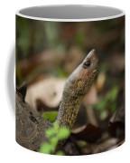 Turtle's Neck  Coffee Mug