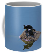 Turtles Tanning Coffee Mug