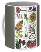 Twelve Month Flower Box Coffee Mug by Barbara McConoughey