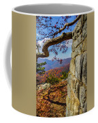 Twenty Minute Cliff Blue Ridge Parkway I Coffee Mug