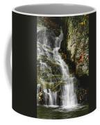 Twin Falls - Nc Coffee Mug