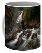 Twin Falls Landscape Coffee Mug