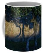Twisted Early Morning Shadows Coffee Mug