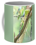 Two Adorable Budgie Parakeets Living In Nature Coffee Mug