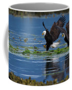 Two American Bald Eagle Touching Down At Low Tide Coffee Mug