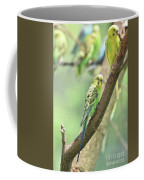 Two Beautiful Yellow Parakeets In A Tree Coffee Mug
