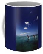 Two Bottlenose Dolphins Dancing Across Coffee Mug