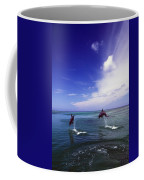 Two Bottlenose Dolphins Coffee Mug