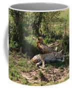 Two Cheetahs Coffee Mug