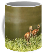Two Chicks Coffee Mug