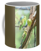 Two Cute Little Parakeets In A Tree Coffee Mug