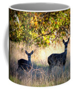 Two Deer In Autumn Meadow Coffee Mug