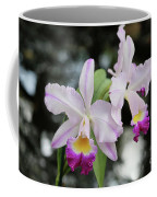 Two Delicate Orchids Coffee Mug