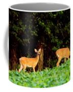 Two Doe Coffee Mug