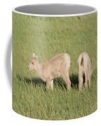 Two Ewes In The Badlands Coffee Mug