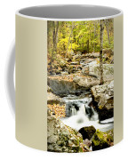 Two Falls Coffee Mug
