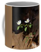 Two Freinds Coffee Mug