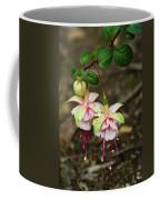 Two Fushia Blossoms Coffee Mug