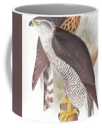 Two Goshawks Coffee Mug