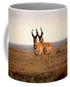 Two Male Pronghorn Antelopes In Alberta Coffee Mug