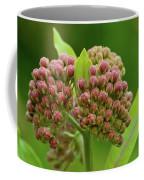 Two Milkweed Flowers Buds  Coffee Mug