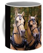 Two Norwegian Fjords 3 Coffee Mug