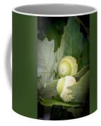 Two Oak Acorns Coffee Mug
