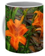 Two Orange Daylilies Coffee Mug