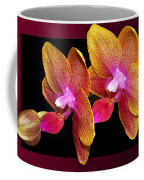 Two Orchids And A Bud Coffee Mug