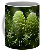 Two Pinecones Coffee Mug