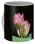 Two Pink Lotus Coffee Mug