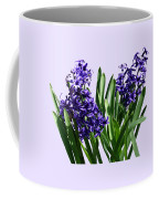 Two Purple Hyacinths Coffee Mug