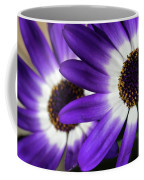 Two Purple N White Daisies Coffee Mug