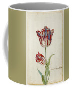 Two Red And White Tulips. Colombijn And Wit Van Poelenburg Coffee Mug
