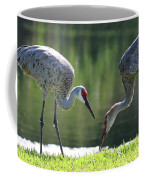 Two Sandhills By The Water Coffee Mug