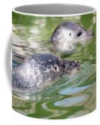 Two Seal Swimming Nature Scene Coffee Mug