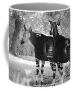 Two Stipers In Black And White Coffee Mug