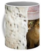Two Stray Cats Coffee Mug