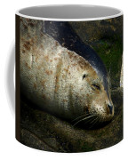 Two Tone Seal Coffee Mug