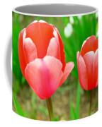 Two Tulips In Bloom  Coffee Mug