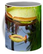Two Victoria Water Lilypads Coffee Mug
