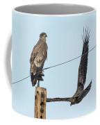 Two Views Of A Juvenile Bald Eagle Coffee Mug