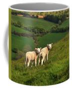 Two Welsh Lambs Coffee Mug