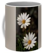 Two White Daisies  Coffee Mug
