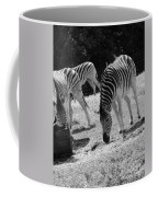 Two Zebras Coffee Mug