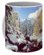 Tyndall Creek Coffee Mug