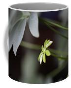 Umbrella Plant Coffee Mug