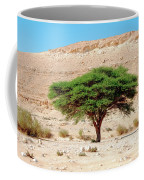 Umbrella Thorn Acacia, Negev Israel Coffee Mug