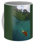 Under The Blue Coffee Mug