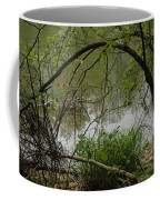 Under The Wild Wood Arch Coffee Mug
